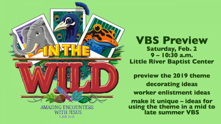 vbs preview.004